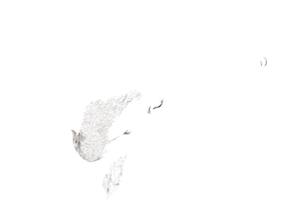 Ass licking, dessin et impression numérique, 29.7 x 21, 2017